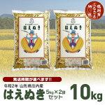 【ふるさと納税】山形県産はえぬき精米5kg×2袋(10kg)