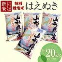 【ふるさと納税】山形県鶴岡産 令和2年産 新米特別栽培米はえ