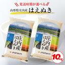 【ふるさと納税】はえぬき 5kg×2袋 計10kg 令和元年...