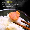 【ふるさと納税】≪定期便≫無洗米はえぬき5kg・無洗米つや姫...
