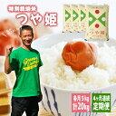 【ふるさと納税】≪定期便≫特別栽培米つや姫 5kg×4ヶ月連