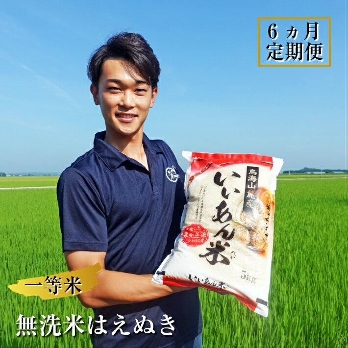≪定期便≫一等米 無洗米はえぬき 5kg×6ヶ月連続 計30kg