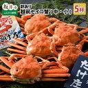 【ふるさと納税】【先行予約】訳あり越前セイコ蟹(中・小) 5杯