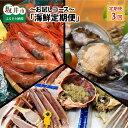 【ふるさと納税】【年3回お届け】 東尋坊やまに水産の海鮮定期...