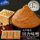 【ふるさと納税】 発酵 味噌 大豆 保存料不使用 丸甲醸造