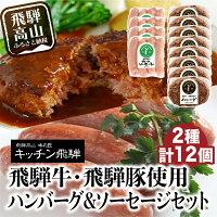 キッチン飛騨飛騨牛・飛騨豚使用ハンバーグとソーセージセットb513