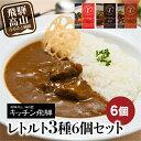 【ふるさと納税】キッチン飛騨 レトルトカ