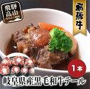 【ふるさと納税】岐阜県産 黒毛和牛テール 1本 飛騨高山 b650