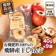 【ふるさと納税】山本果樹園干しりんご40g入り9袋a531
