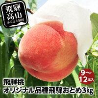 【ふるさと納税】飛騨桃オリジナル品種飛騨おとめ39〜12玉入りもも桃飛騨高山a632
