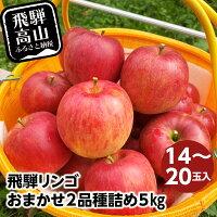【ふるさと納税】飛騨リンゴおまかせ2品種詰め514〜20玉入りりんご飛騨高山a633