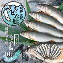 【ふるさと納税】飛騨 天然鮎 中サイズ 10尾 天然 アユ ...