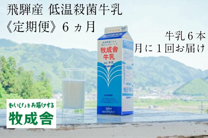低温殺菌牛乳 6本×6カ月 定期便 牧成舎のこだわり牛乳