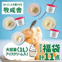 【ふるさと納税】<牧成舎>飛騨のミルクの旨みたっぷりアイスクリーム12個セット[B0004]
