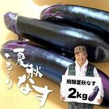 【ふるさと納税】飛騨 夏秋なす 2kg (8-10本)茄子 ナス 大なす 産地直送 夏野菜 野菜 [Q720]