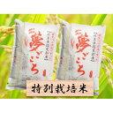 【ふるさと納税】特別栽培米★精米20kg(分搗き可)または玄