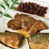 【ふるさと納税】a15-425 訳あり サバ イカ 煮 魚 鰤 ブリ 鯖 詰合せ 10袋 楽天限定