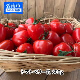 【ふるさと納税】トマト ミニトマト 幻のミニトマト トマトベリー 800g お試し H004-026