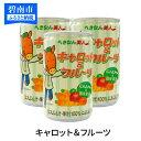 【ふるさと納税】キャロット&フルーツ 160g×30缶 H017-021