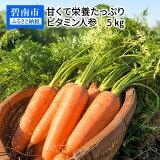 【ふるさと納税】甘くて栄養たっぷり ビタミン人参 5kg H095-003