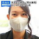 【ふるさと納税】洗える立体式 おしゃれマスク(日本製)(男女...