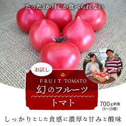 【ふるさと納税】【お試し】たった3か月しか食べられない 幻のファーストトマト H004-046 画像1