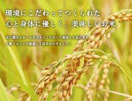 環境にこだわってつくられた心と身体に優しく、美味しいお米