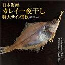 日本海産 カレイ一夜干し特大サイズ5枚セット