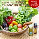 【ふるさと納税】オーガニック野菜セット&調味料2種セット(有機やさいドレッシング、サーディンソース)