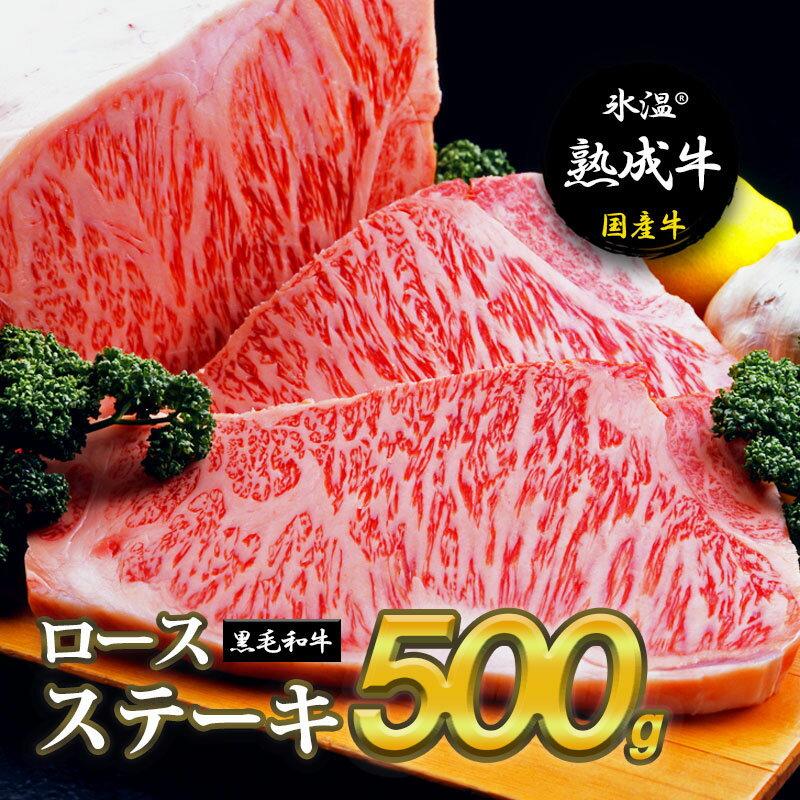 【ふるさと納税】氷温(R)熟成牛 ロースステーキ【黒毛和牛】(2枚で合計500g)