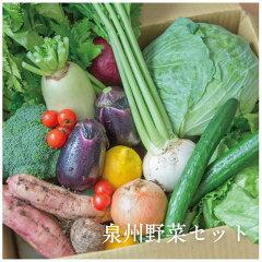 新鮮な季節の泉州野菜セット