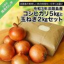 【ふるさと納税】令和3年淡路島産コシヒカリ5kgと玉ねぎ2kgセット