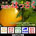 【ふるさと納税】【新鮮果実】木成りはっさく 10kg(M〜3...