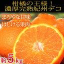 【ふるさと納税】果肉プリプリ♪紀州デコ 約5kg※平成31年2月下旬か...