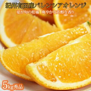 有田産バレンシアオレンジ