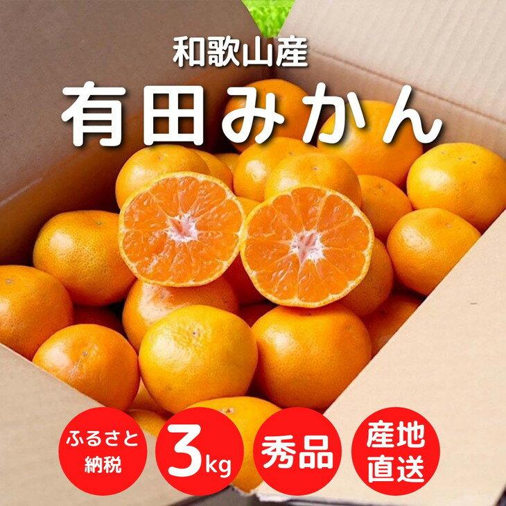 [まごころ手選別]和歌山県産 有田みかん 3kg 1箱 (2S〜Lサイズ混合)