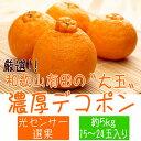 【ふるさと納税】■厳選!!和歌山有田の濃厚