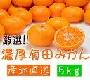 【ふるさと納税】厳選!濃厚有田みかん 5kg※2019年11...