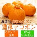 【ふるさと納税】■厳選!!和歌山有田の濃厚デコポン 約5kg...