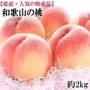 【ふるさと納税】■【産直・人気の特産品】和歌山の桃 約2kg...