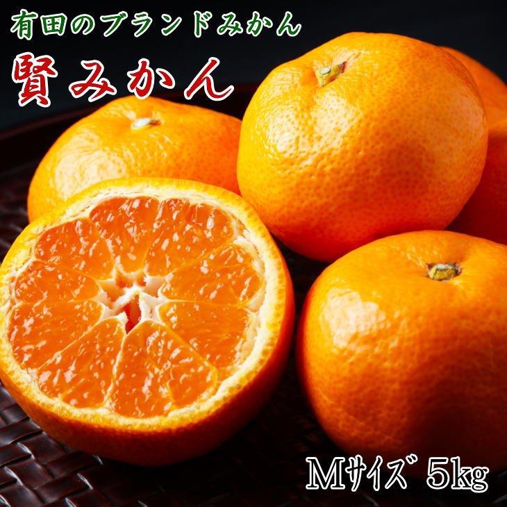 有田ブランド「賢みかん」5kg(S〜Lサイズおまかせ・赤秀)