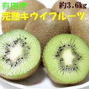 【ふるさと納税】■【人気】有田産完熟キウイフルーツ約3.6k...