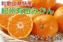 【ふるさと納税】[厳選]紀州有田みかん5kg (Sサイズ・赤