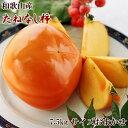 【ふるさと納税】[甘味たっぷり]和歌山産たねなし柿(M〜4L...