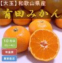 【ふるさと納税】[大玉]和歌山県産 有田みかん 10kg ひ...