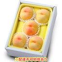 【ふるさと納税】●先行予約受付●岡山県産 清水 白桃 約1.