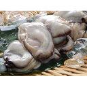 【ふるさと納税】北吉水産 冷凍かき 【魚介類・カキ・牡蠣】