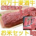 【ふるさと納税】Asz-12 四万十麦酒牛(しまんとビールぎ...