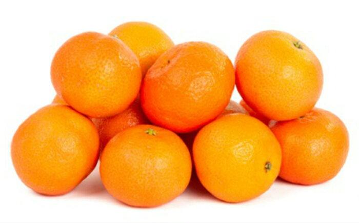 【ふるさと納税】【A-441】有機肥料栽培の《もぎたて新鮮》温州みかん約4kg<先行予約>