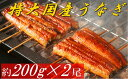 【ふるさと納税】【A2-011】魚市場厳選 国産うなぎの蒲焼...